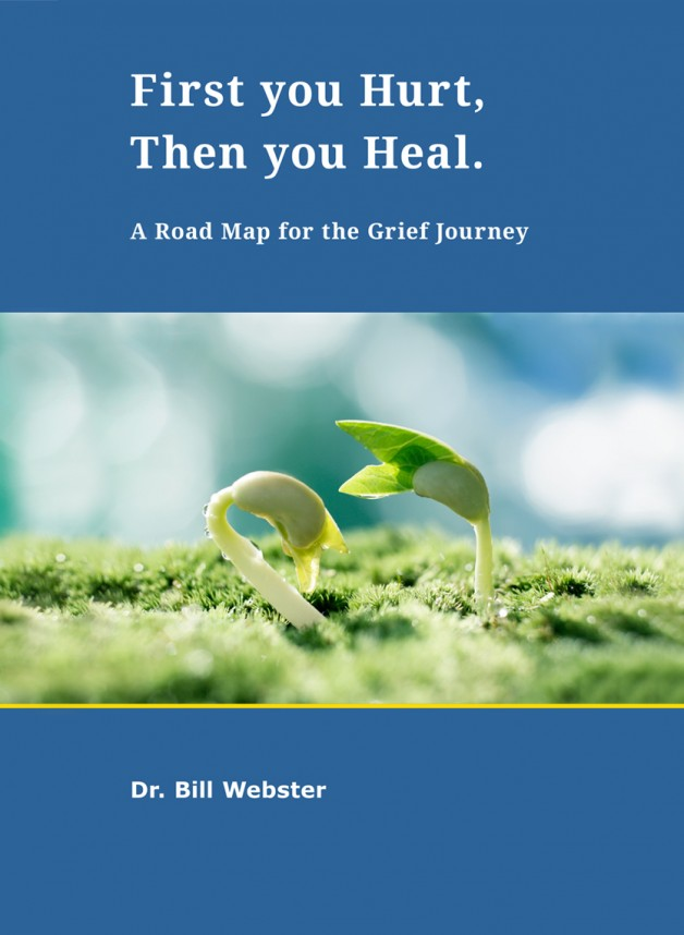 Dr. Websters new eBook First you Hurt, then you Heal is now available